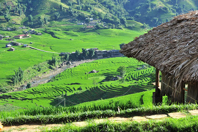 A homestay at Sapa