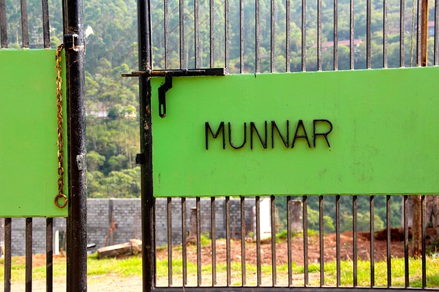 Munnar Hill Station | Places To Visit in Munnar