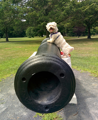 This is an actual cannon from 1813.  A piece of American History, these cannons sit in Belmont Lake State park for all to see and enjoy. The park is has a beautiful lake and allows (leashed) dogs!