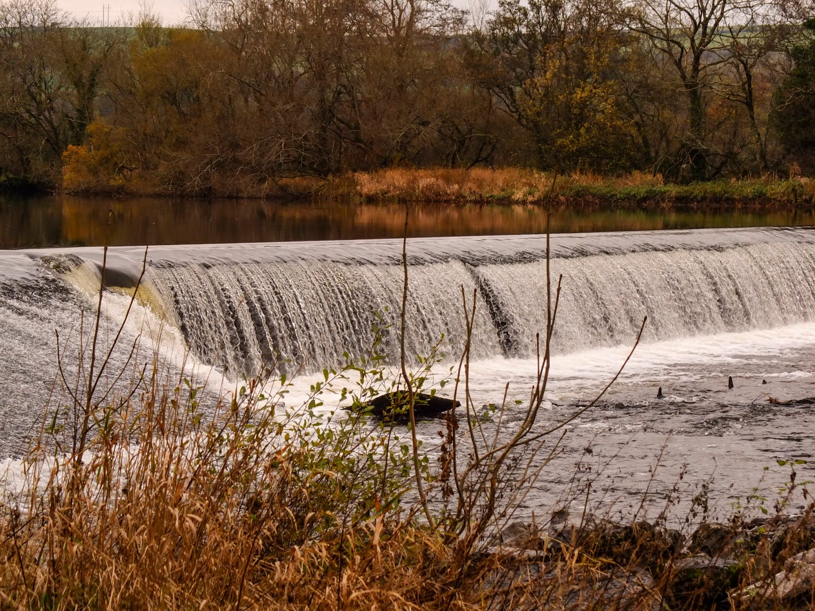 A weir on the river Lee in the Ballincollig Regional Park, County Cork.