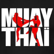 PROFESSOR de MUAY-THAI