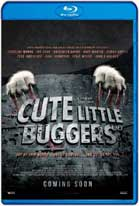 Cute Little Buggers (2017) HD 1080p Español