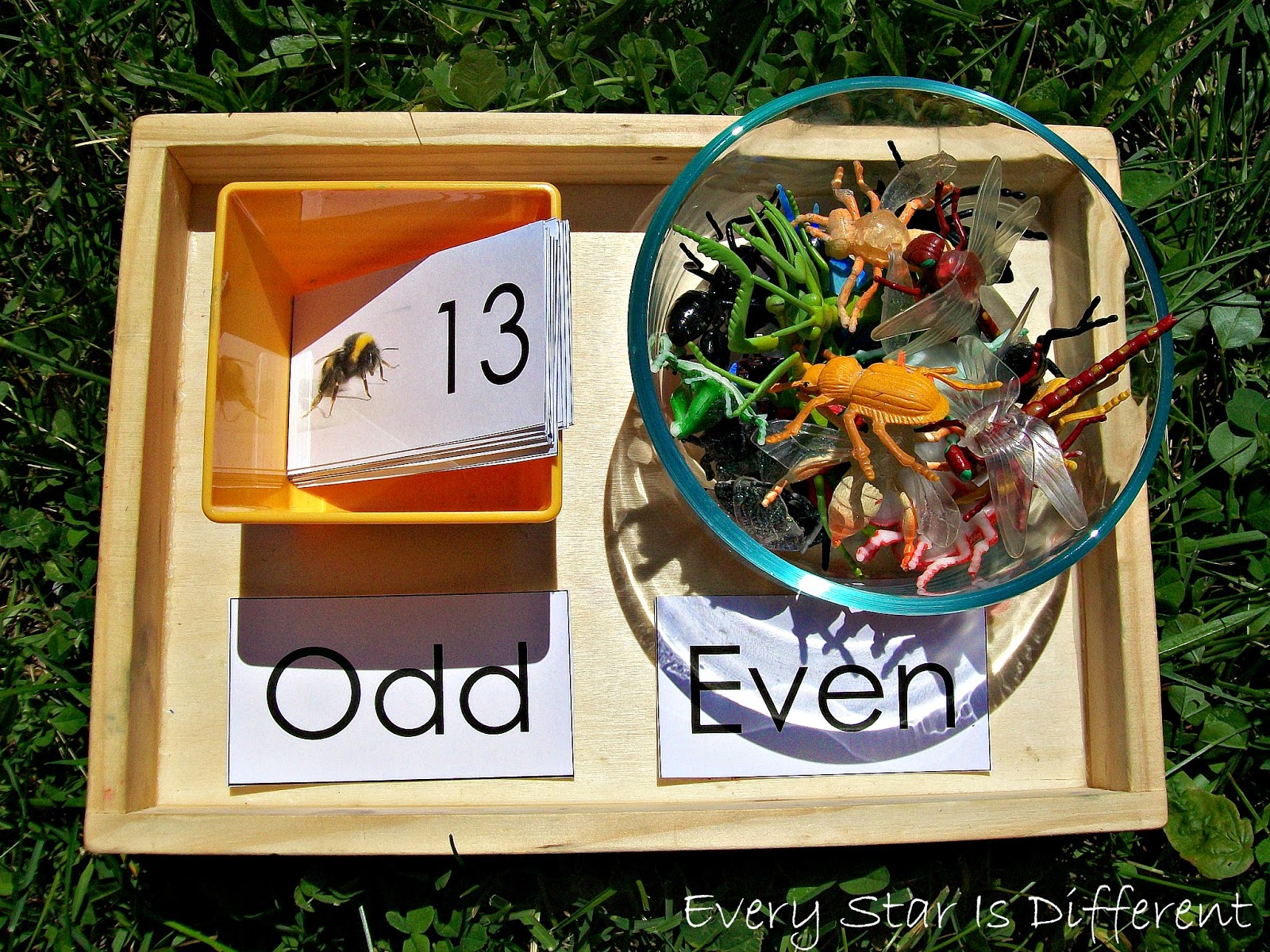 Insect themed odd and even numbers activity for kids (free printable)