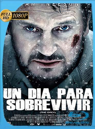 Infierno blanco (2011)HD [1080p] Latino [GoogleDrive] SilvestreHD