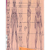 Como desenhar anime mangá anatomia feminina