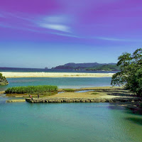 Soge Beach Keindahan Di Tepi Jalur Lintas Selatan Pacitan