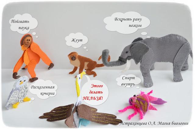 palchikovye-igrushki-pervaja-pomoshh-pri-ukuse-pauka