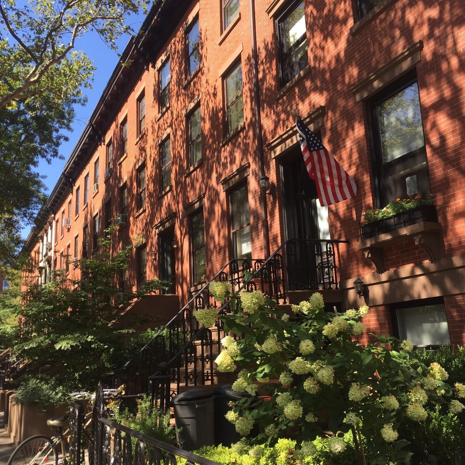 boston blogger summer, brooklyn brown stones, bos blogger in brooklyn, brooklyn blog post
