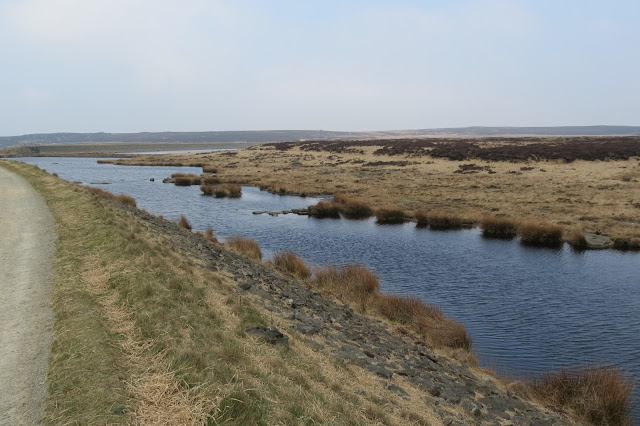 A long, narrow body of water in the flat moorland beside the track. It's lined with clumps of rushes.