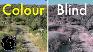 color-blindness-www.healthnote25.com