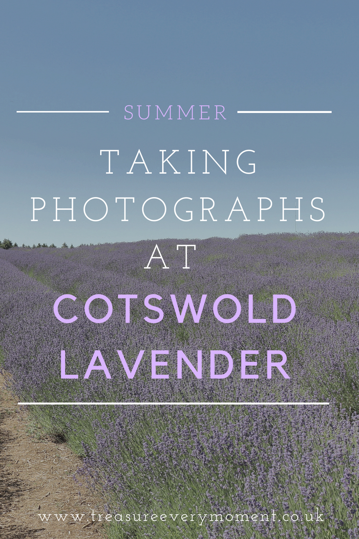 SUMMER: Taking Family Photographs at Cotswold Lavender