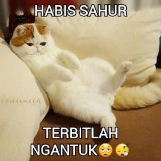 Foto lucu dan Gambar lucu DP BBM dan Meme Terbaru Jomblo Buka puasa lucu tentang ramadhan