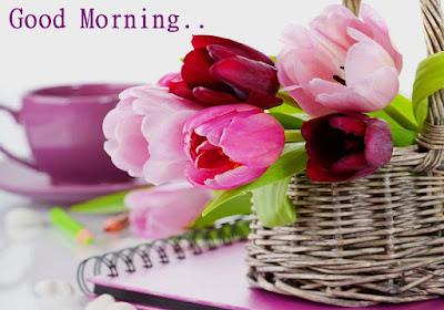 lovely-tulips-good-morning-love-imagess
