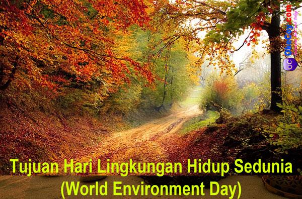 tujuan hari lingkungan hidup sedunia internasional world environment day