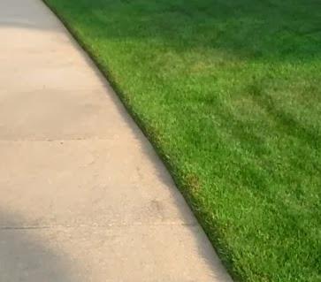 обработка-края-газона