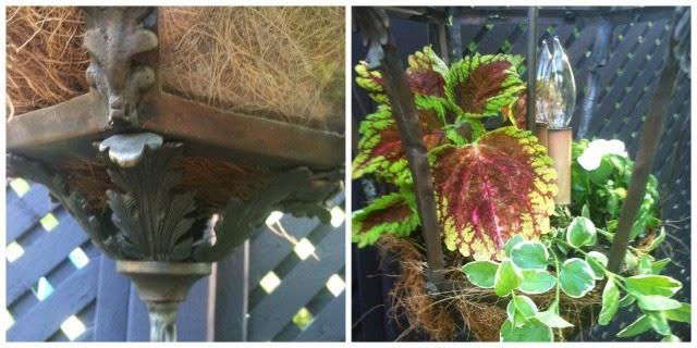 vintage lantern recycled into a planter, garden art, Debbie miller