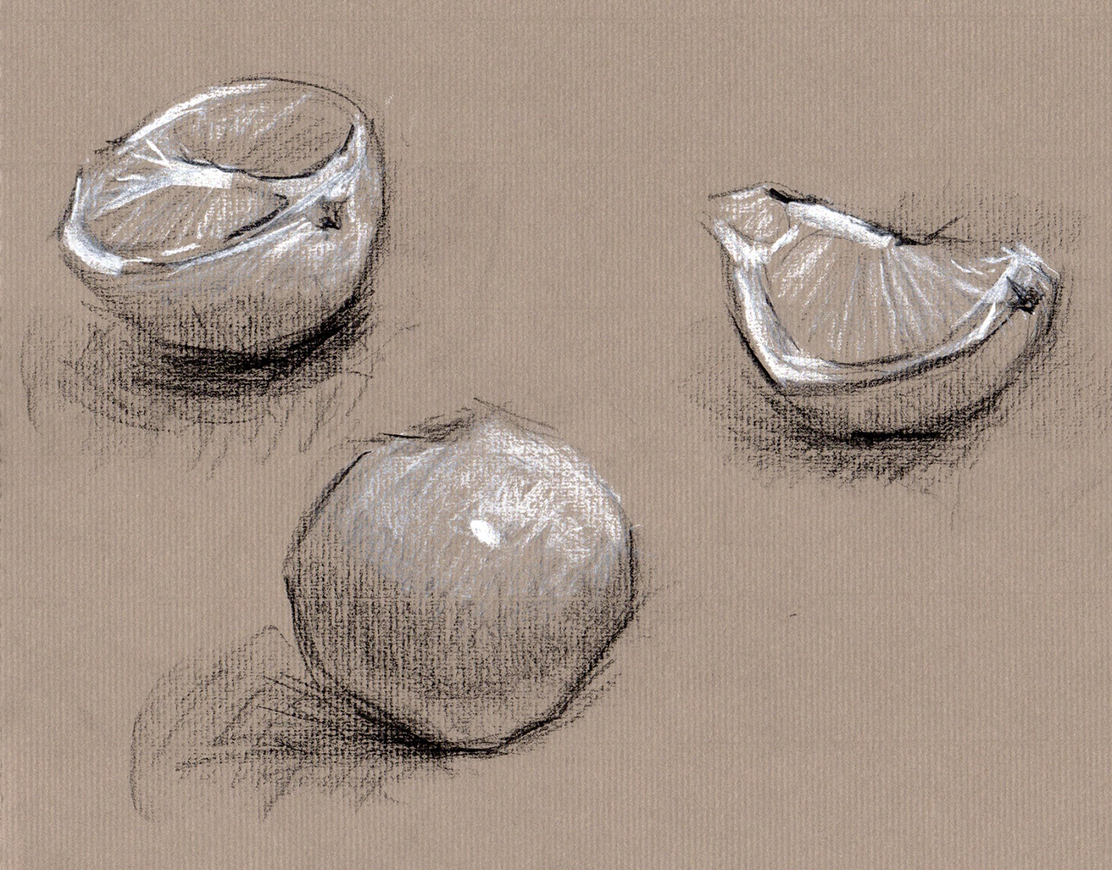 Why learn to draw the art verve study of orange cont on toned paper malvernweather Choice Image