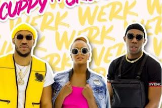 DJ Cuppy Werk ft. Skuki