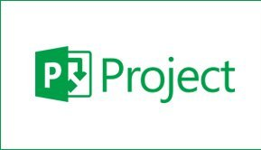 Microsoft Project Standard and Project Professional Major Difference