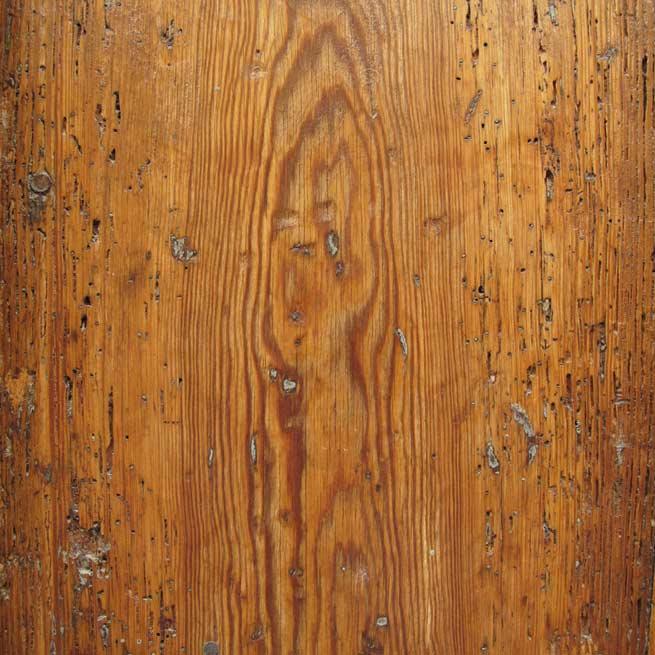 Carcoma y tratamiento - Tratamiento carcoma madera ...