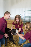 three 4-H'ers with calf