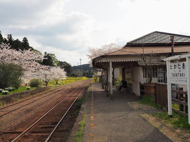 小湊鐵道 高滝駅 桜
