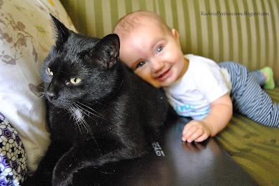 O kocie co chciał zadusić niemowlaka...albo o niemowlaku duszącym kota