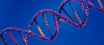 Mapa genético de la esclerosis sistémica. Conociendo el lupus y otras enfermedades autoinmunes.