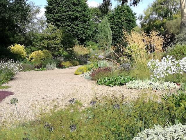 english garden, ogród angielski, suchy ogród