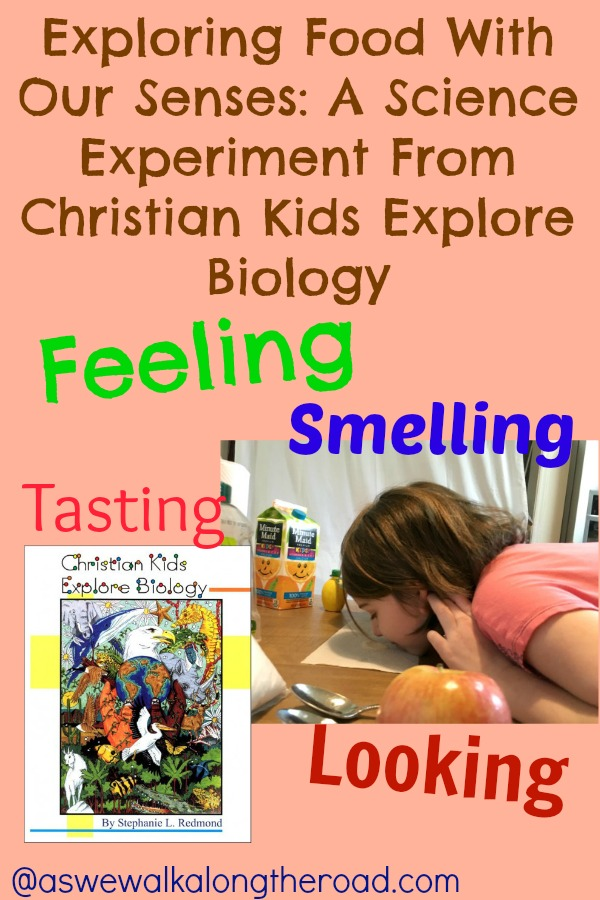 Science experiment with five senses