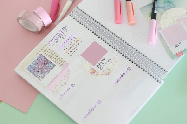Bullet journal: descargable para crear una semana rosas