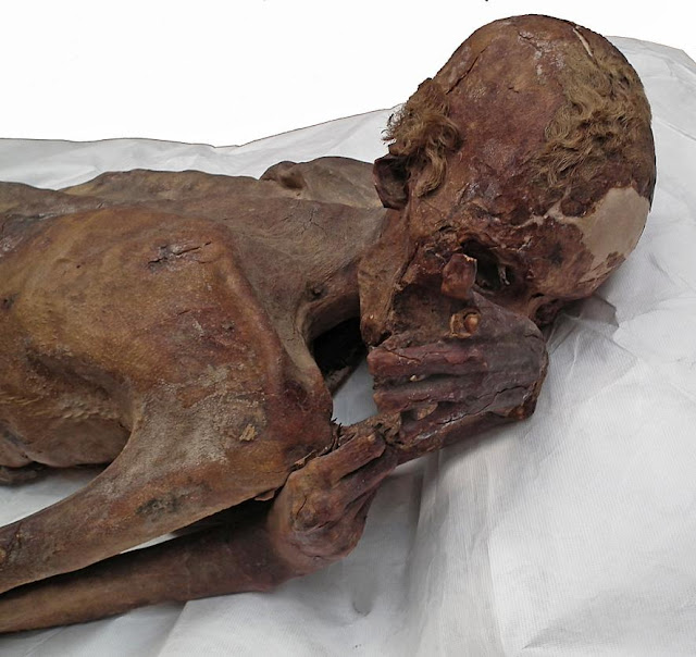 World's earliest figural tattoos discovered on 5,000-year-old Egyptian mummies