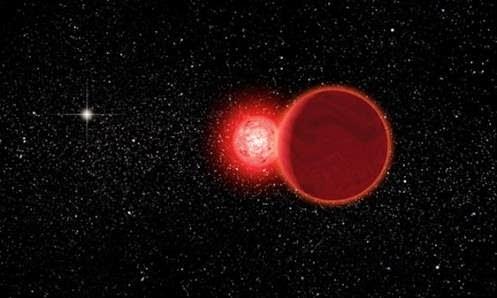 scholzs star artist concept - NASA podria estar ocultando un planeta escondido tras el sol