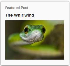 http://www.thebirdali.com/2014/04/the-whirlwind.html