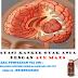 Pengobatan Kanker Otak Secara Alami tanpa Operasi