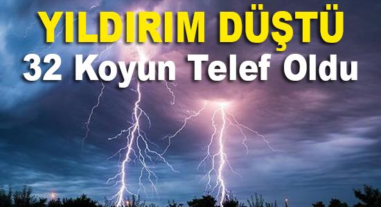 MERSİN, Mersin Haber, Mersin Son Dakika,