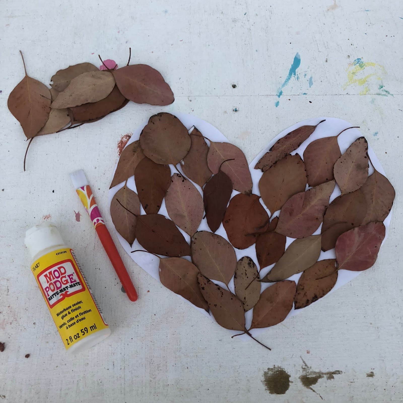 Leaves puzzle for kids
