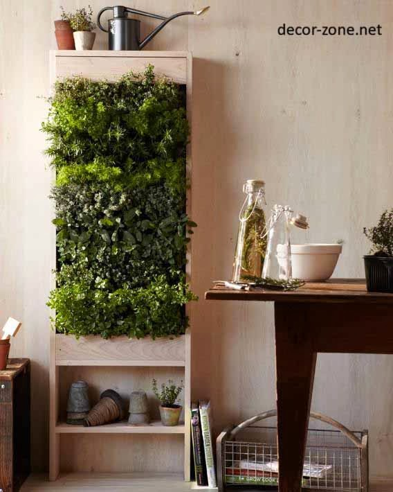 plants in the interior, kitchen decorating ideas
