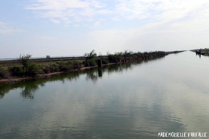 croisière fluviale en Camargue