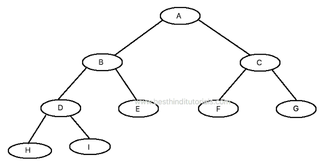 Strict-Binary-Tree-Example-in-Hindi