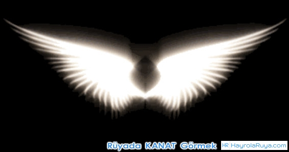 Rüyada Kanadın Görülmesi rüyada kanat çırpıp uçmak rüya melek kanadı görmek rüyada tavuk kanat görmek rüyada kanatla uçtuğunu görmek rüyada sırtında kanat görmek rüyada kanatlarının çıkması rüyada siyah kanat görmek rüyada kanatlı insan görmek rüyada kanatlı kadın görmek