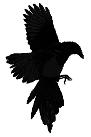 https://2.bp.blogspot.com/-V48dQEgCv_A/V1rXYIsSGgI/AAAAAAAADHs/PgI0IYCtt2YQv0u-BHq0aogS6iuETpCqgCLcB/s1600/raven.png
