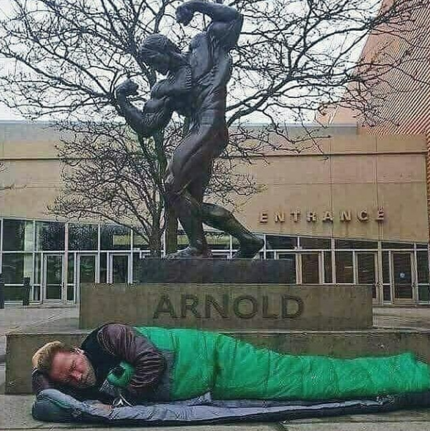 Story Behind Arnold Schwarzenegger Sleeping Beside A Statue Of Himself