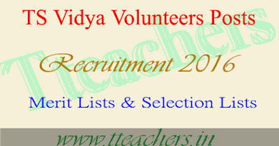 Deo Warangal Vidya Volunteers VVs Selection Lists Merit List 2016-17