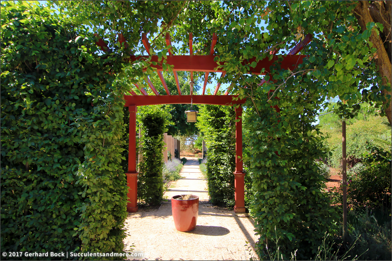 Arbor On The West Side Of The Garden
