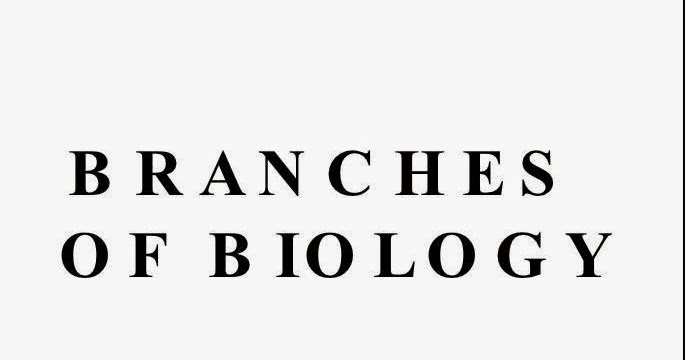 INTRODUCTION TO BIOLOGY AND ITS BRANCHES « SimpleBiology