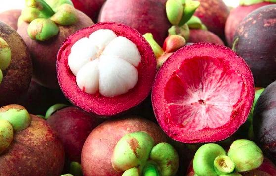 80 Manfaat dan Khasiat Kulit Manggis untuk Kesehatan, Kecantikan Serta Efek Samping