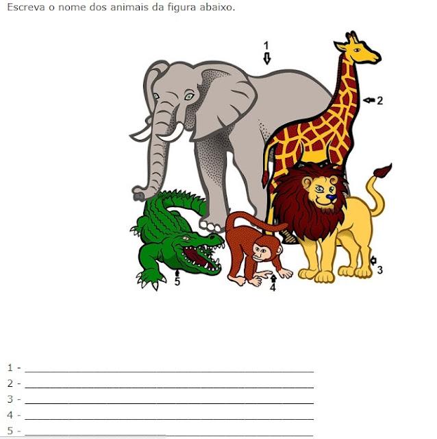 Atividades de ciências para Educação Infantil.