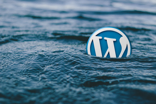 najlepsze szablony wordpress na strony personalne