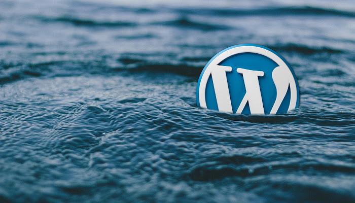Top 6 Najlepsze Szablony Wordpress na Strony Personalne